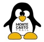 casto_penguin